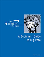 A Beginners Guide to Big Data - Blue Paper