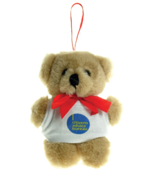 View a larger, more detailed picture of the 10cm Tiny Teddy - T-Shirt