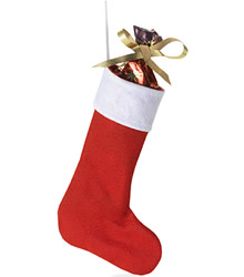 View a larger, more detailed picture of the Christmas Stocking