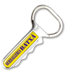 View a larger, more detailed picture of the DISC Key Shaped Keyring
